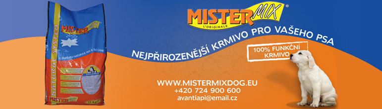 MISTERMIX 771×221 NEW