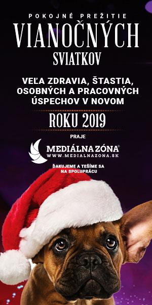MEDIALNAZONA 2018 – 300×600