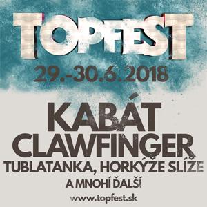 Topfest – 300×300